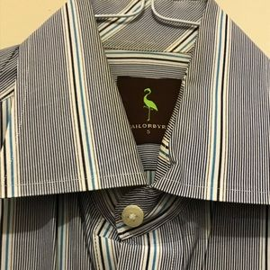 Tailorbyrd Dress Shirts